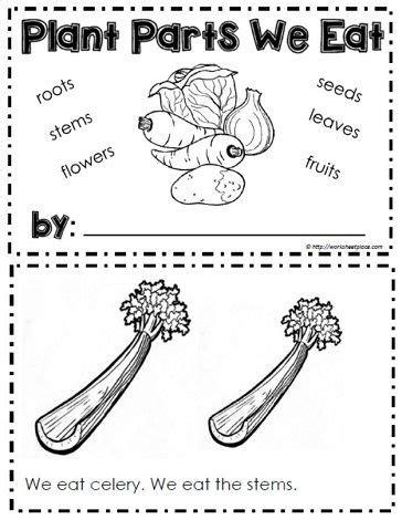 booklet  plants  eat parts   plant plant
