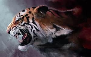 Tiger Wallpaper Hd QyGjxZ