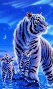 White Tiger w/ babies | iPhone Wallpaper | Pinterest ...