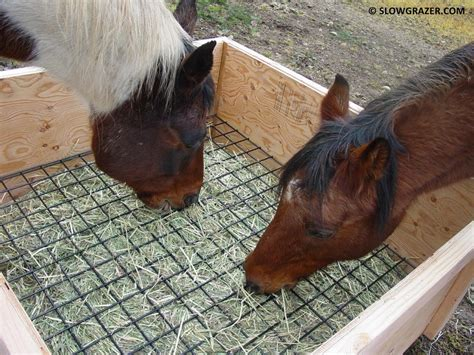 hay feeders for horses some things to consider before you get your own