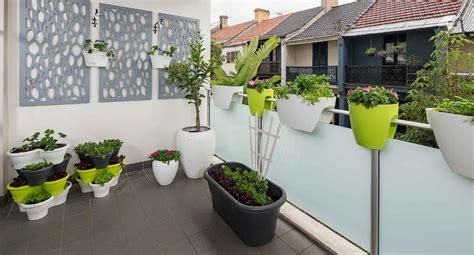 tanaman hias teras rumah mudah dirawat cantik