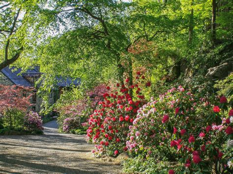 garden pictures gallery garden extraordinary pictures of gardens ideas appealing colourful rectangle vintage gravel