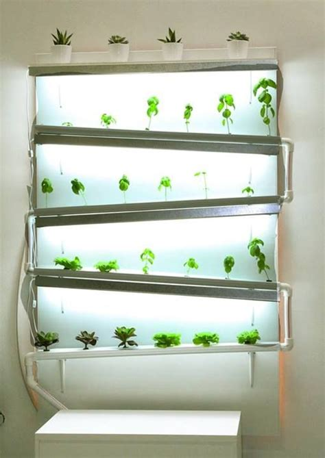 a fully functional indoor hydroponic wall growing herbs
