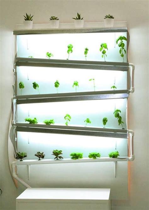 best 20 indoor hydroponics ideas on