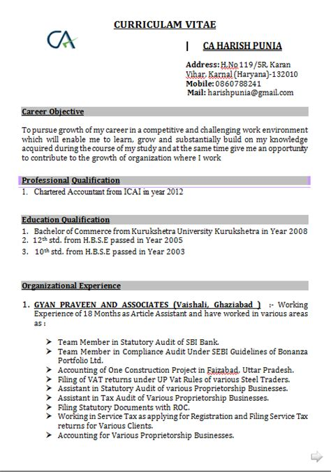 accounts resume format in word