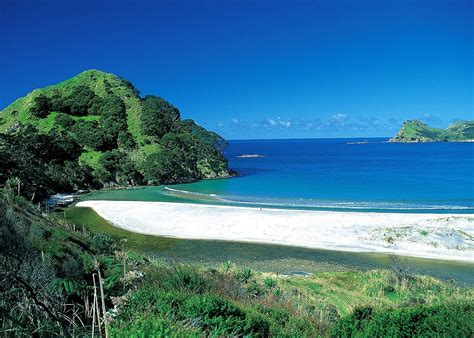 Visit Great Barrier Island, New Zealand  Audley Travel