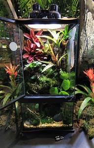 paludarium zoo med laboratories inc