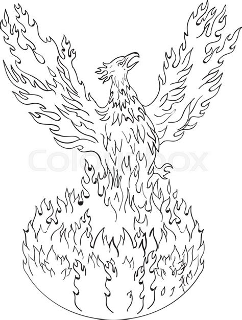 drawing sketch style illustration   stock vector colourbox