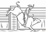 Bull Coloring Riding Cowboy Pages Printable Rodeo Horse Drawing Riders Colouring Drawings Sheets Supercoloring Printables Patterns Sketch Adult Colorings Paper sketch template