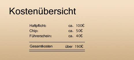 Baustelleneinrichtung Gesetze Pflichten Kosten by Hundef 252 Hrerschein Bald In Ganz Deutschland Pflicht