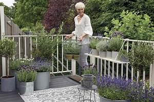 Lavendel Pflanzen Balkon : balkonpflanzen schm cken den balkon das haus ~ Lizthompson.info Haus und Dekorationen