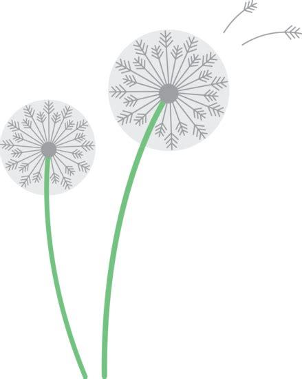 white dandelions  clip art