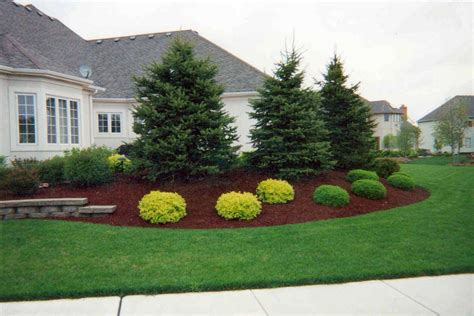 landscaping with trees ideas inspiring landscaping trees 7 evergreen trees landscaping ideas newsonair org