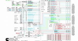 N14 Sss Owners Manual Clutch Schematic