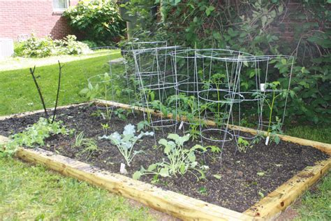 lueker munchkins school play vegetable garden