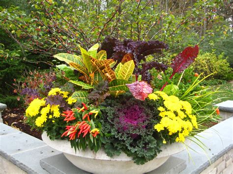 Fall Season Flower Container Ideas I Love This Plant