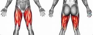 Thigh Pain I Thigh Injuries