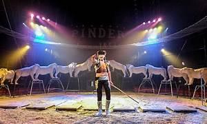 Cirque Pinder Paris 2016 : cirque pinder paris idf groupon ~ Medecine-chirurgie-esthetiques.com Avis de Voitures