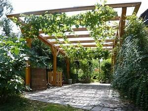 Pergola Mit Wein Bepflanzen : blickdichte carport begr nung mit drahtseilen ~ Eleganceandgraceweddings.com Haus und Dekorationen