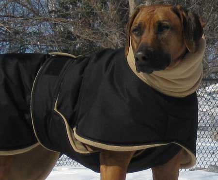 dog winter coats   dog  winter coats