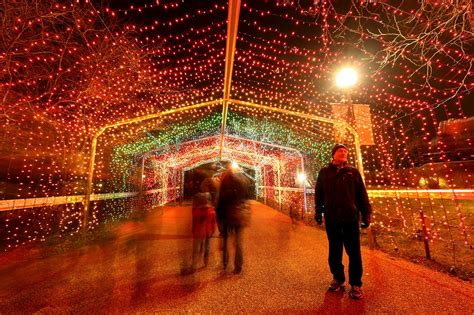 brookfield zoo lights 2017 brookfield zoo and lincoln park zoo holiday lights