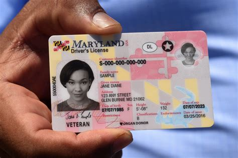  one card/campus id is the official identification card for students, faculty, and staff and is required for entrance into all buildings on the university of maryland, baltimore campus. New Maryland flag-themed driver's licenses to be mailed only - Baltimore Sun