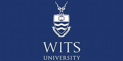 Wits University Career Internship Programme Opportunity Za