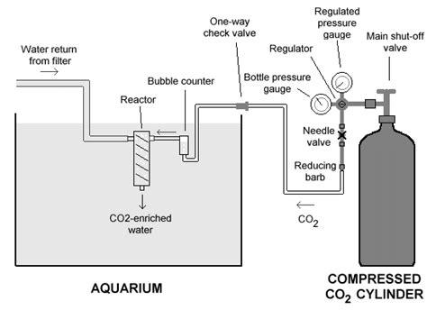 co2 system for planted aquarium hoa g nguyen s freshwater planted aquarium pressurized co2 system