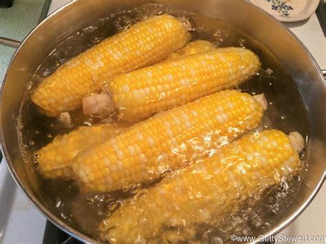 boiling corn in the husk how to pick store and boil corn on the cob gettystewart com