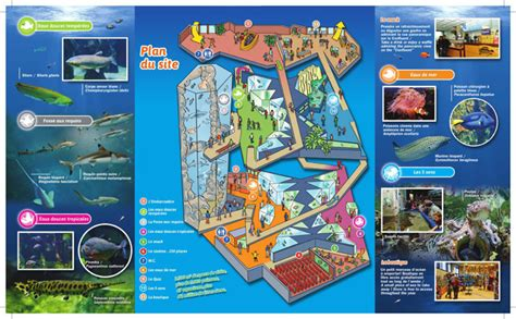 adresse aquarium de lyon aquarium lyon infos pratiques