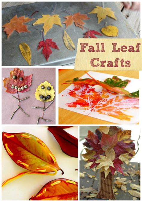 fall science activities  experiments  leaves