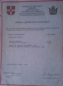 What Is A Medical Certificate Zimbabwean Birth Certificate Certificates Templates Free
