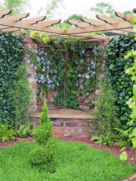 How To Plant Climbers  Planting Climbers Against Walls