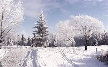 Snow Wallpapers Desktop