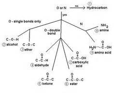 Organic Chemistry Mechanisms Chart Very Handy Chart About The Importance Of Sn2 Organic