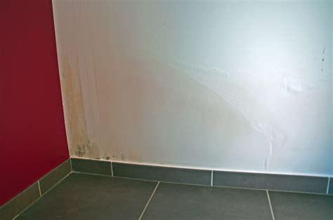humidit 233 sur murs d une maison neuve 20 messages