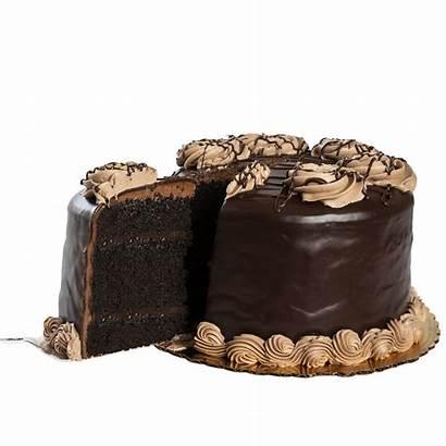 Cake Chocolate Death Layer Bakery