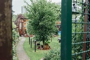 äpfel Pflücken Berlin : 11 dinge die du beachten musst wenn du einen ~ Lizthompson.info Haus und Dekorationen