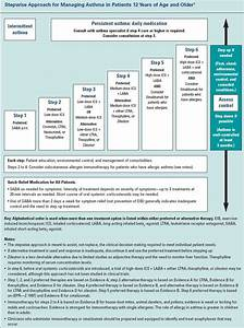 Asthma Classification And Treatment Chart Pediatric Asthma Inhaler Spacer Click Image For More