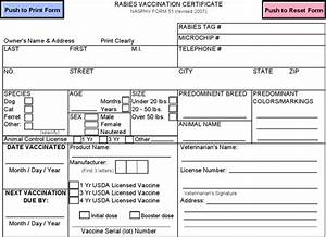 download rabies vaccination certificate template for free With rabies vaccine certificate template