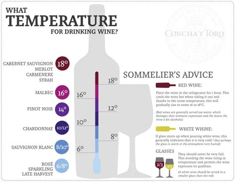 what is the ideal temperature for serving wine what is the ideal temperature for serving wine