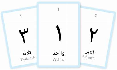 Flashcards Arabic Number Numbers Colour Printable Alphabet
