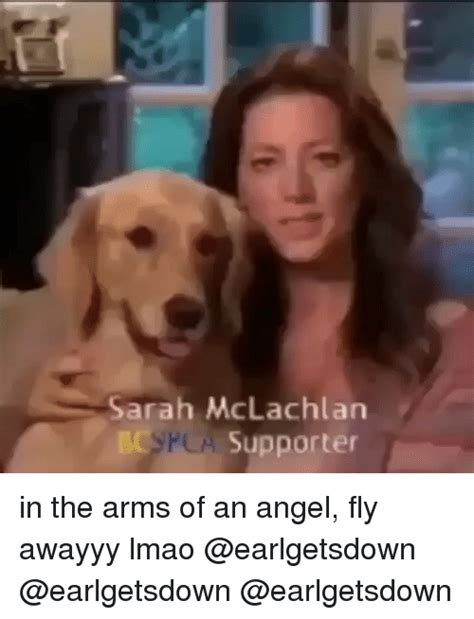 In The Arms Of An Angel Meme - funny sarah mclachlan memes of 2016 on sizzle funny