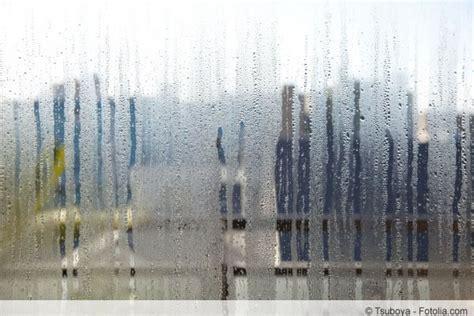 Fensterkitt Entfernen Und Erneuern by Schimmel An Silikon Fensterfugen Und Fensterdichtung