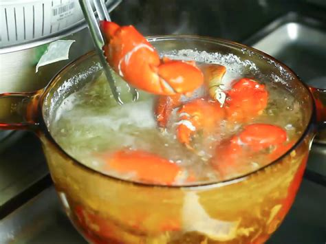 how to boil crab how to boil crab legs 6 steps with pictures wikihow