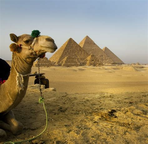 Luxury Travel Package Fall 2010 Tour Egypt And The Nile