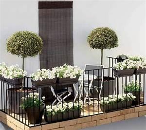 balkonbepflanzung pflegeleichte balkonpflanzen With katzennetz balkon mit gardens of the galaxy groot