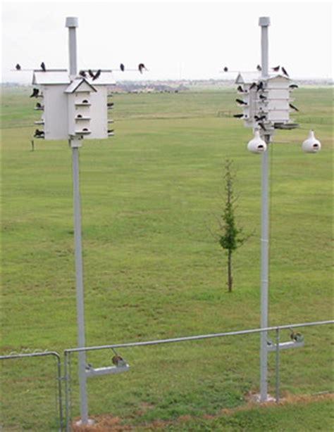 purple martin birdhouse poles anderson cc