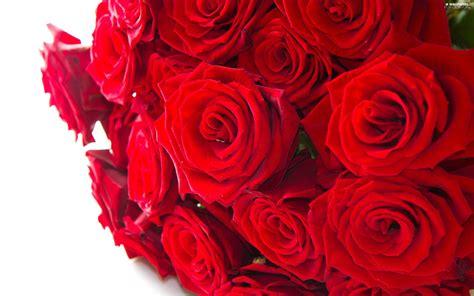 bouquet, Red, Roze - For desktop wallpapers: 2560x1600