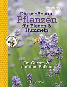 die schonsten pflanzen fur bienen und hummeln im garten With französischer balkon mit pflanzen für bienen im garten